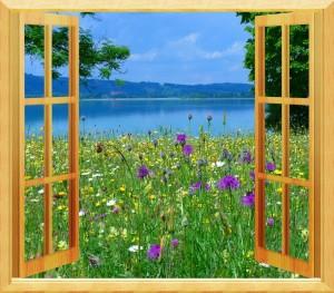 window-665828_960_720
